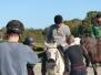 balade à cheval 2014